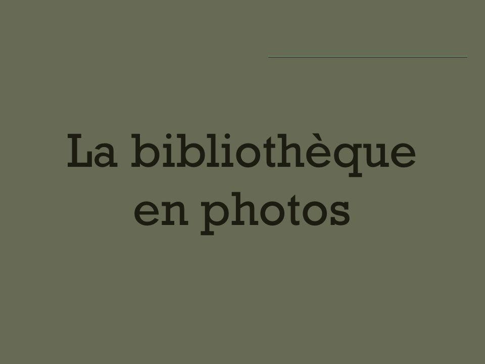 La bibliothèque en photos