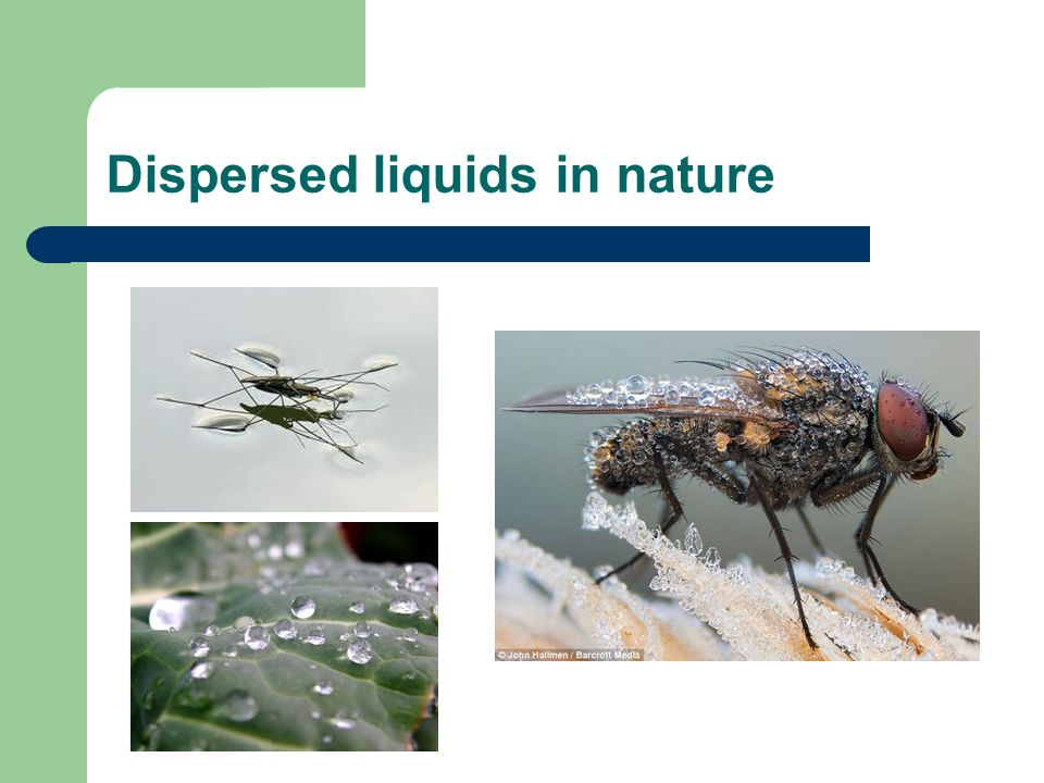 Artificiallly dispersed liquids http://www-math.mit.edu/~bush/gallery.html http://lmlm6-62.univ-lille1.fr/lml/perso/pbrunet/page_perso.html http://www.dolomite-microfluidics.com/products/system-solutions