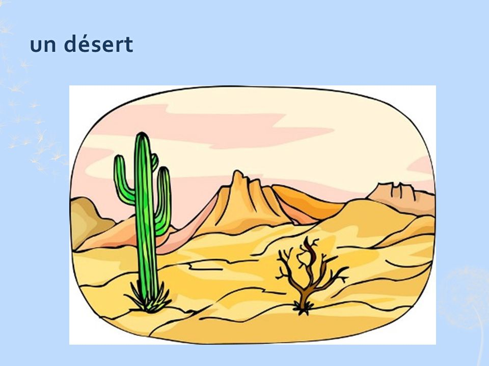 un désertun désert