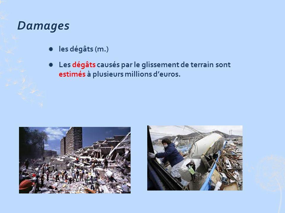 Damages les dégâts (m.) Les dégâts causés par le glissement de terrain sont estimés à plusieurs millions deuros.