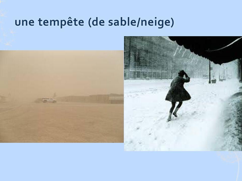une tempête (de sable/neige)une tempête (de sable/neige)