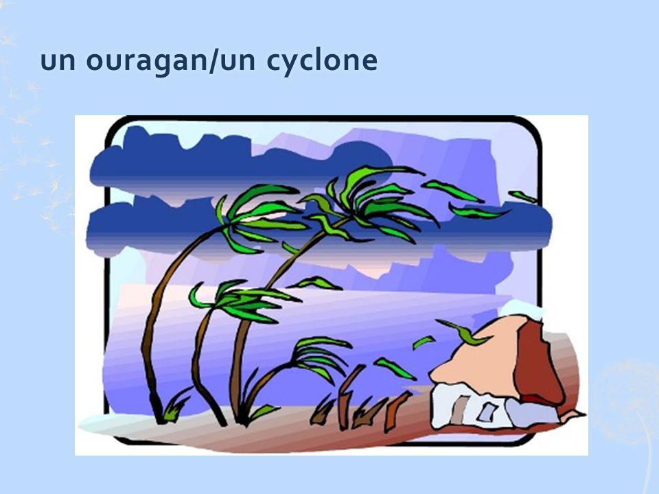 un ouragan/un cycloneun ouragan/un cyclone