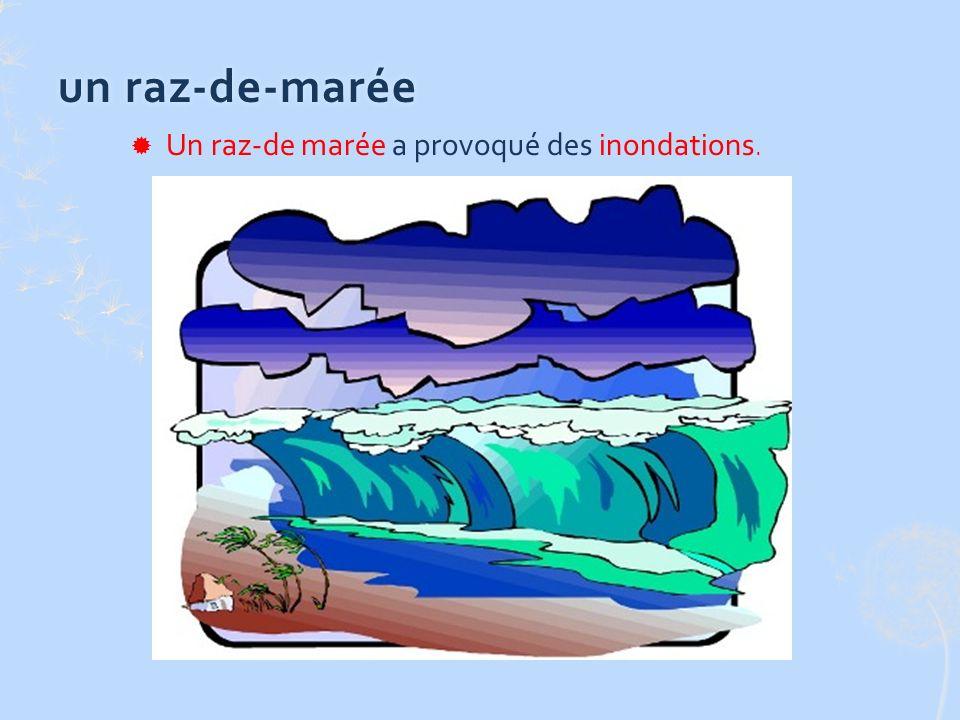 un raz-de-maréeun raz-de-marée Un raz-de marée a provoqué des inondations.