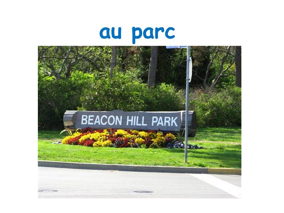 au parc léce PS