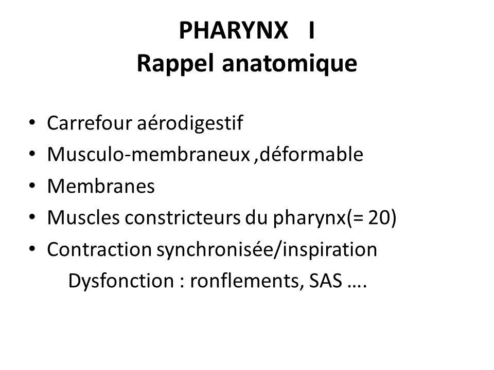 PHARYNX I Rappel anatomique Carrefour aérodigestif Musculo-membraneux,déformable Membranes Muscles constricteurs du pharynx(= 20) Contraction synchron