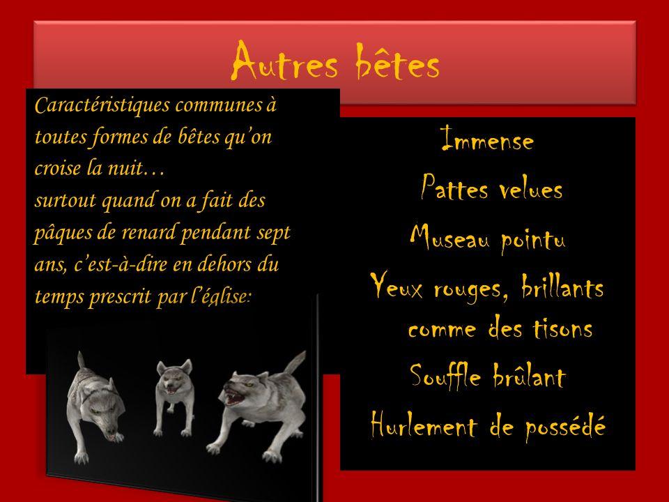 Autres bêtes Caractéristiques communes à toutes formes de bêtes quon croise la nuit… surtout quand on a fait des pâques de renard pendant sept ans, ce