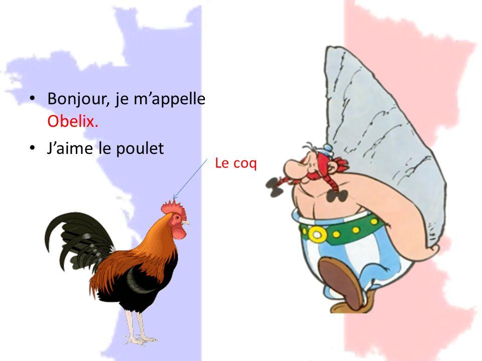 Bonjour, je mappelle Obelix. Jaime le poulet Le coq