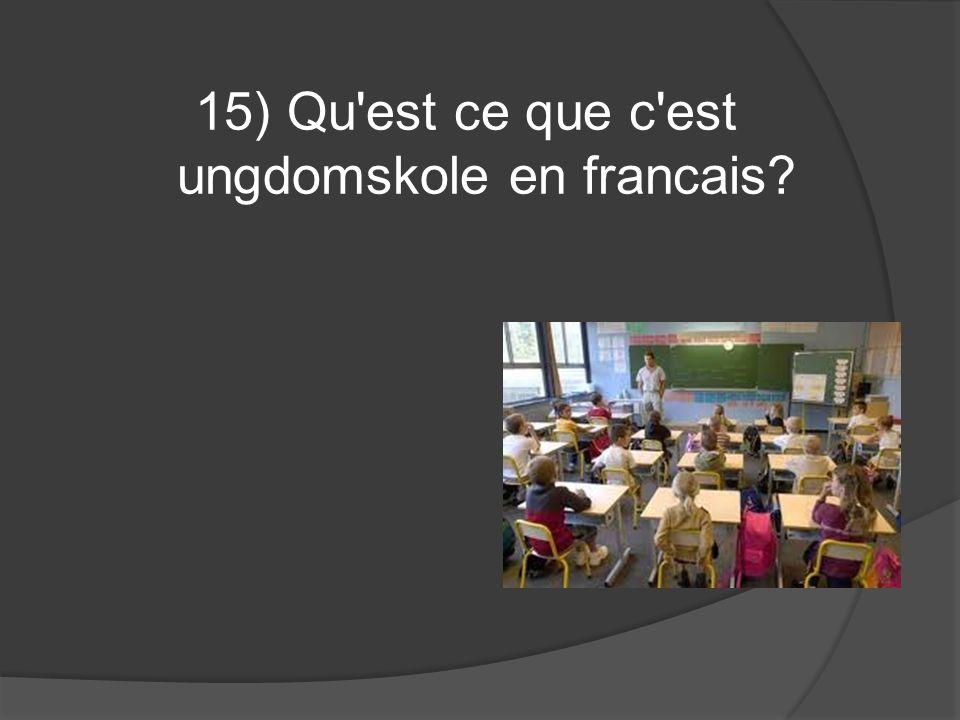 15) Qu'est ce que c'est ungdomskole en francais?