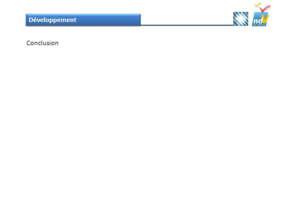 Développement Conclusion