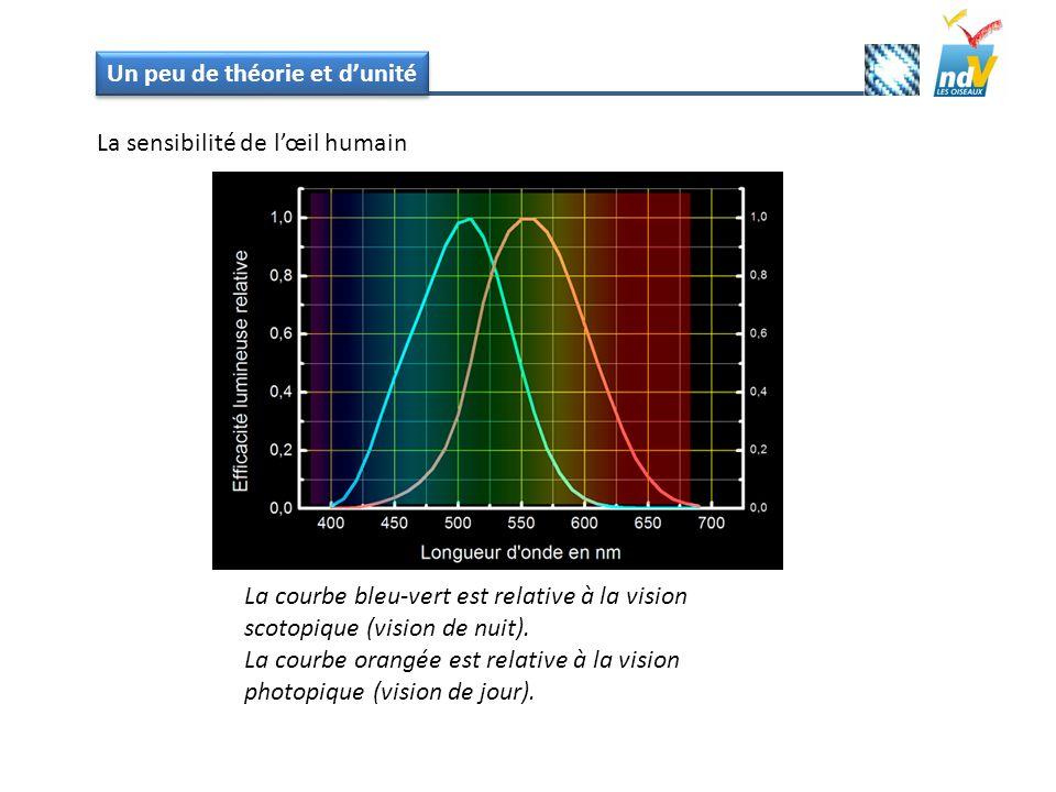 Un peu de théorie et dunité La sensibilité de lœil humain La courbe bleu-vert est relative à la vision scotopique (vision de nuit). La courbe orangée