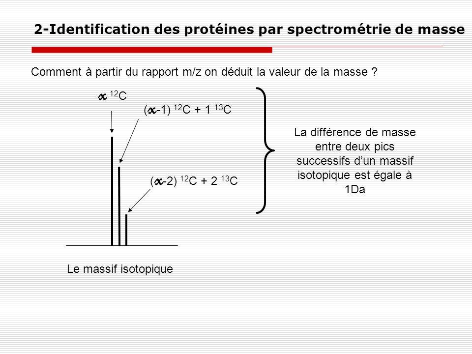 Comment à partir du rapport m/z on déduit la valeur de la masse ? 2-Identification des protéines par spectrométrie de masse Le massif isotopique x 12