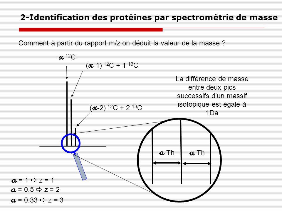 Comment à partir du rapport m/z on déduit la valeur de la masse ? 2-Identification des protéines par spectrométrie de masse x 12 C ( x -1) 12 C + 1 13