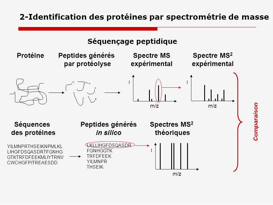 ProtéinePeptides générés par protéolyse Spectre MS expérimental YILMNPRTHSEIKNPMLKL LIHGFDSQASDRTFGNHG GTKTRFDFEEKMLIYTRNV CWCHGFPITREAESDD LKLLIHGFDS