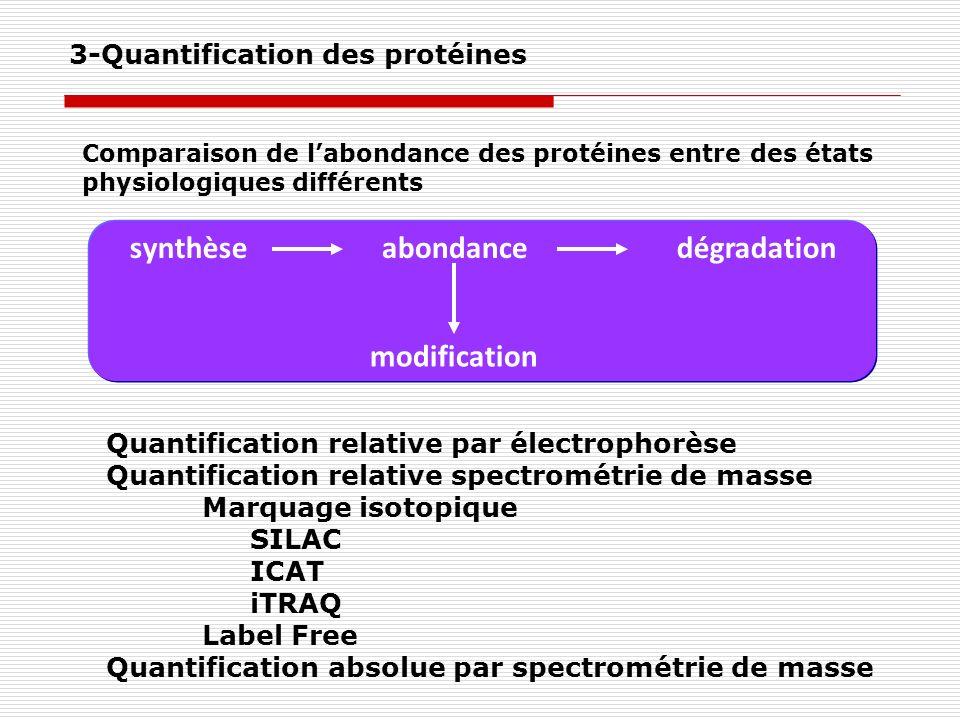 3-Quantification des protéines Quantification relative par électrophorèse Quantification relative spectrométrie de masse Marquage isotopique SILAC ICA