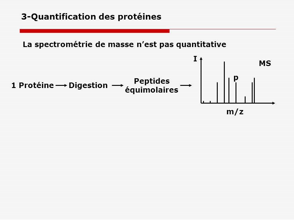 La spectrométrie de masse nest pas quantitative I m/z MS 1 ProtéineDigestion Peptides équimolaires p 3-Quantification des protéines