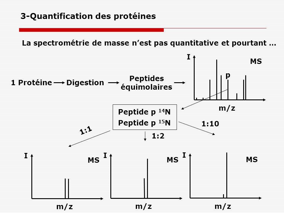 La spectrométrie de masse nest pas quantitative et pourtant … I m/z MS 1 ProtéineDigestion Peptides équimolaires I m/z MS Peptide p 14 N Peptide p 15
