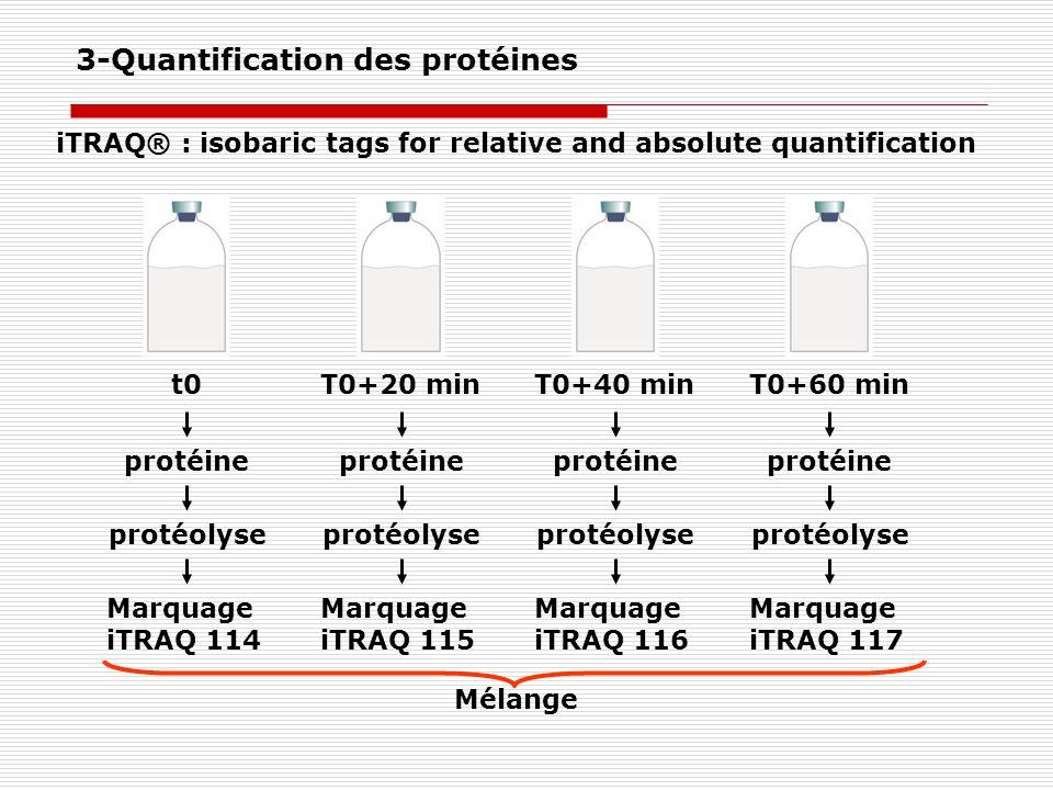 Mélange Marquage iTRAQ 114 protéine protéolyse t0T0+20 min Marquage iTRAQ 115 protéine protéolyse T0+40 min Marquage iTRAQ 116 protéine protéolyse T0+