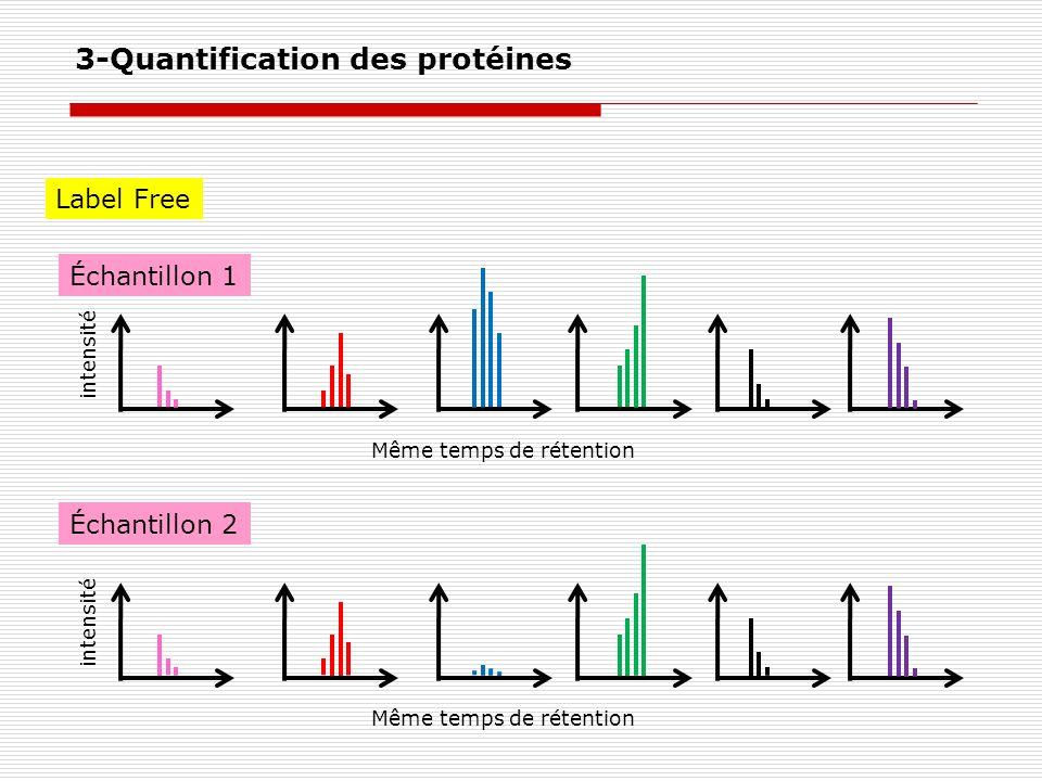 Label Free intensité Même temps de rétention intensité Même temps de rétention Échantillon 1 Échantillon 2 3-Quantification des protéines