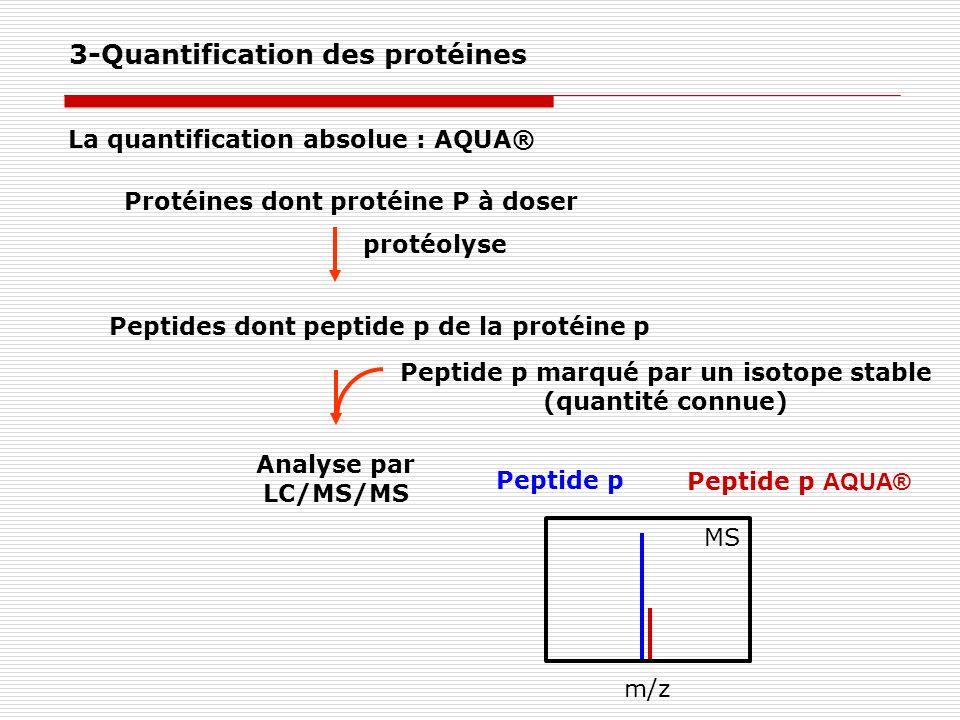 Protéines dont protéine P à doser protéolyse Peptides dont peptide p de la protéine p Peptide p marqué par un isotope stable (quantité connue) Analyse