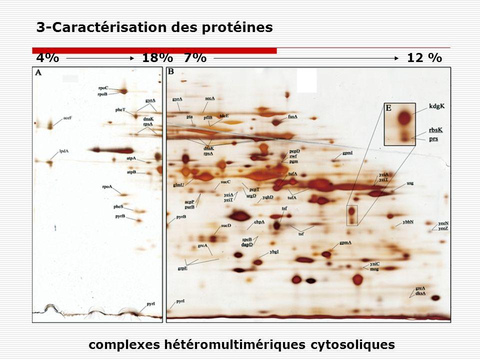 4%18%7%12 % complexes hétéromultimériques cytosoliques 3-Caractérisation des protéines
