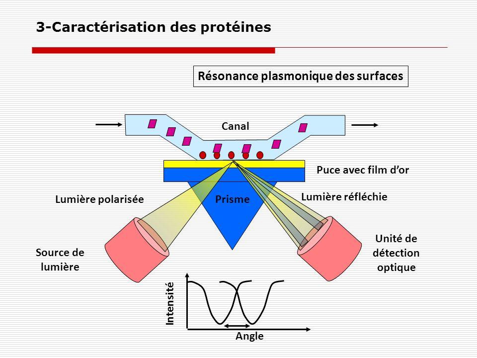 Résonance plasmonique des surfaces Source de lumière Unité de détection optique Prisme Puce avec film dor Canal Lumière polarisée Lumière réfléchie An
