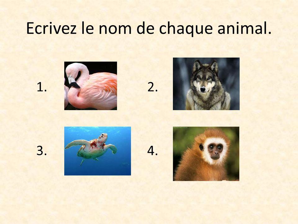 Ecrivez le nom de chaque animal. 1. Le flamant rose 3. La tortue 2. Le loup 4. Le singe
