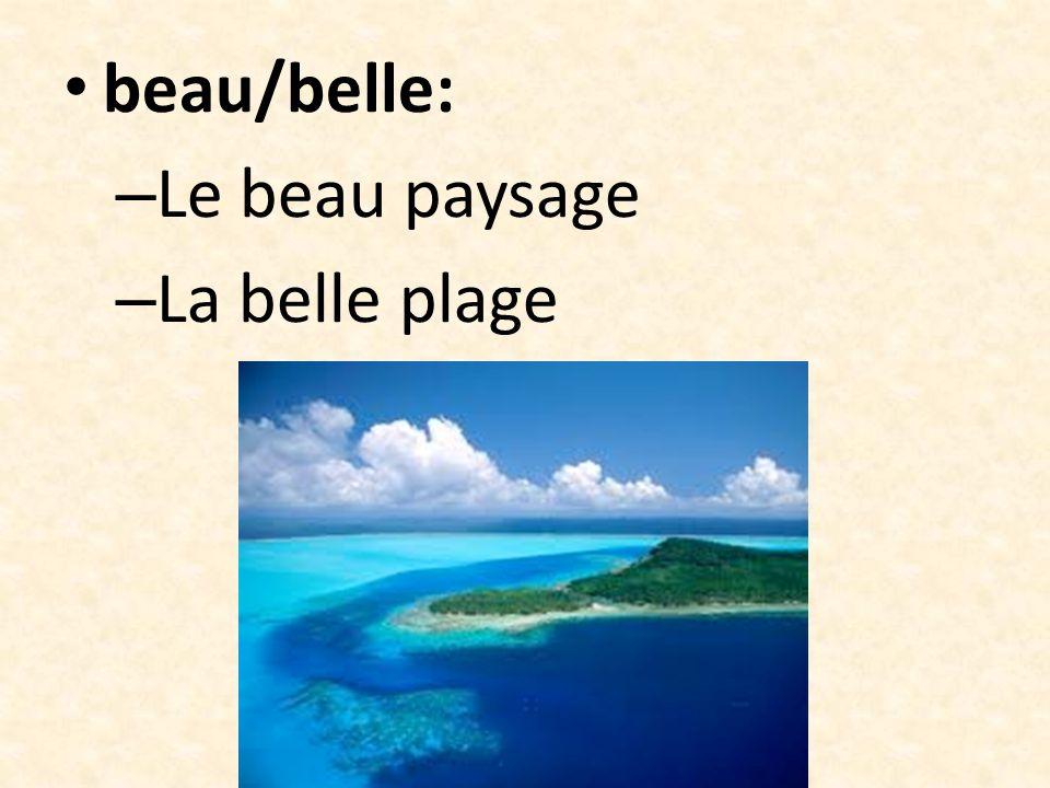 Joli/jolie: – La jolie fleur – Le joli flamant