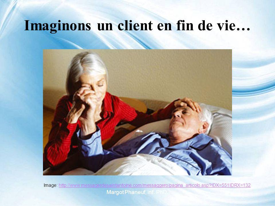 Imaginons un client en fin de vie… Image: http://www.messagerdesaintantoine.com/messaggero/pagina_articolo.asp?IDX=551IDRX=132http://www.messagerdesaintantoine.com/messaggero/pagina_articolo.asp?IDX=551IDRX=132 Margot Phaneuf, inf.