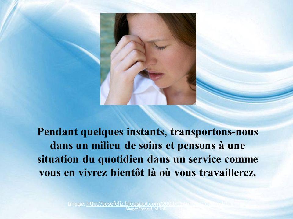 Image: http://www.brunette.brucity.be/ferrer/Etudes/Categories/Paramedic/pages/bsi.htmlhttp://www.brunette.brucity.be/ferrer/Etudes/Categories/Paramedic/pages/bsi.html Pour mieux comprendre, tentons de nous mettre dans latmosphère… Margot Phaneuf, inf.