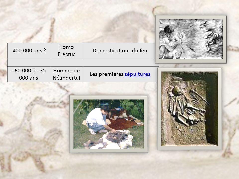 400 000 ans ? Homo Erectus Domestication du feu - 60 000 à - 35 000 ans Homme de Néandertal Les premières sépulturessépultures