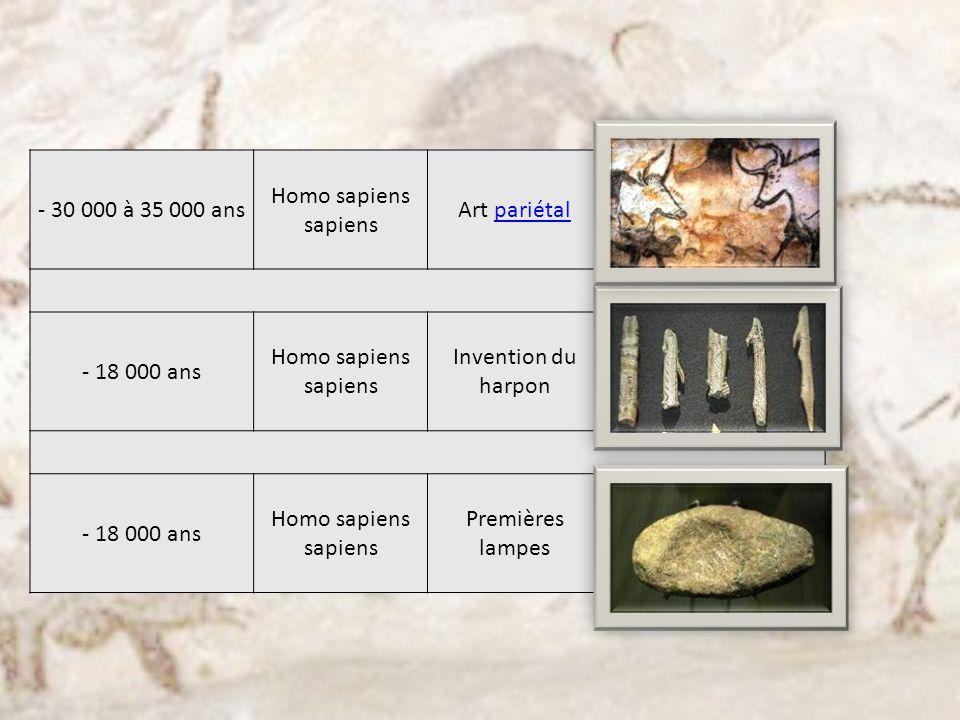 - 30 000 à 35 000 ans Homo sapiens sapiens Art pariétalpariétal - 18 000 ans Homo sapiens sapiens Invention du harpon - 18 000 ans Homo sapiens sapien