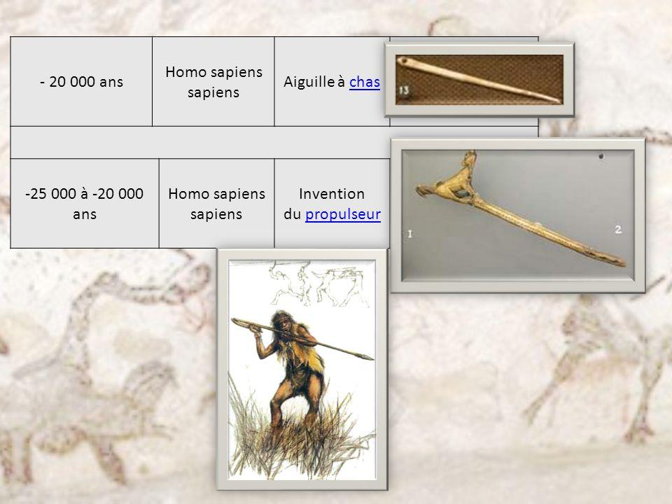 - 20 000 ans Homo sapiens sapiens Aiguille à chaschas -25 000 à -20 000 ans Homo sapiens sapiens Invention du propulseurpropulseur