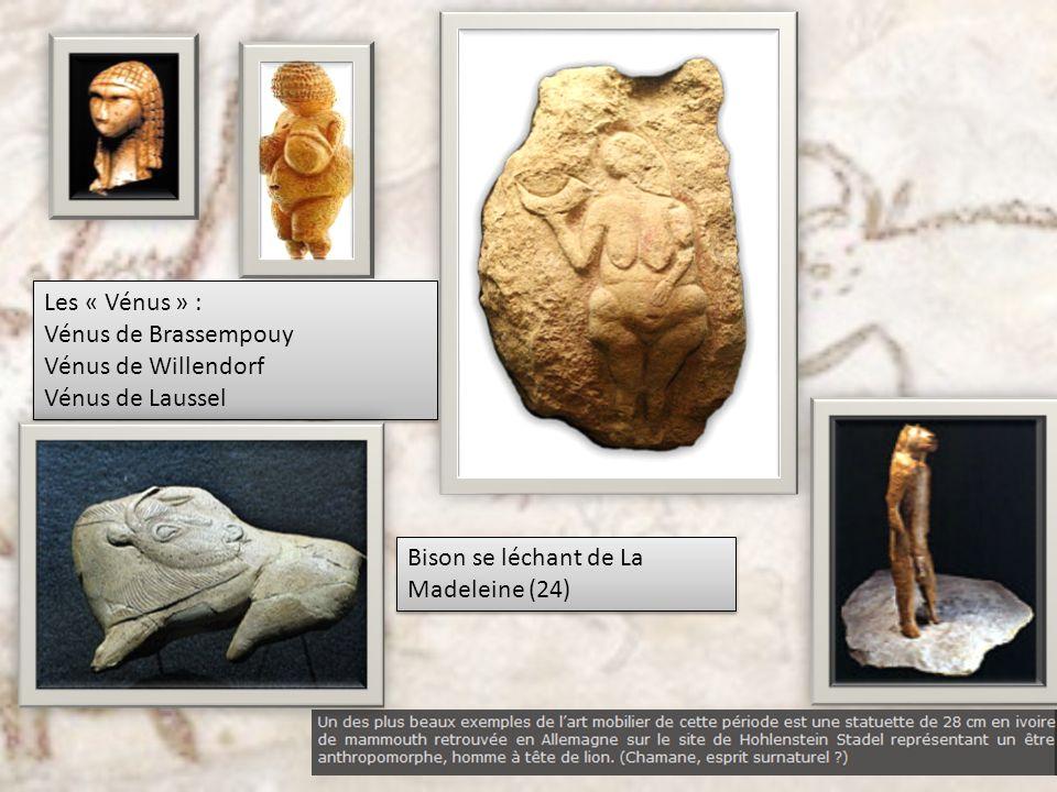 Les « Vénus » : Vénus de Brassempouy Vénus de Willendorf Vénus de Laussel Les « Vénus » : Vénus de Brassempouy Vénus de Willendorf Vénus de Laussel Bi