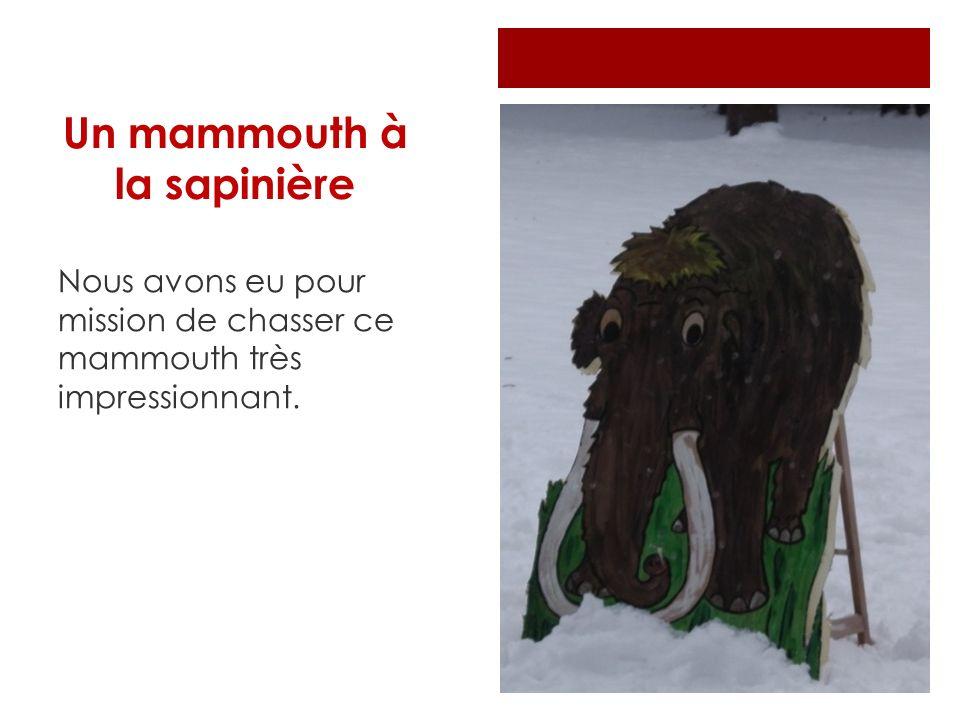 Un mammouth à la sapinière Nous avons eu pour mission de chasser ce mammouth très impressionnant.