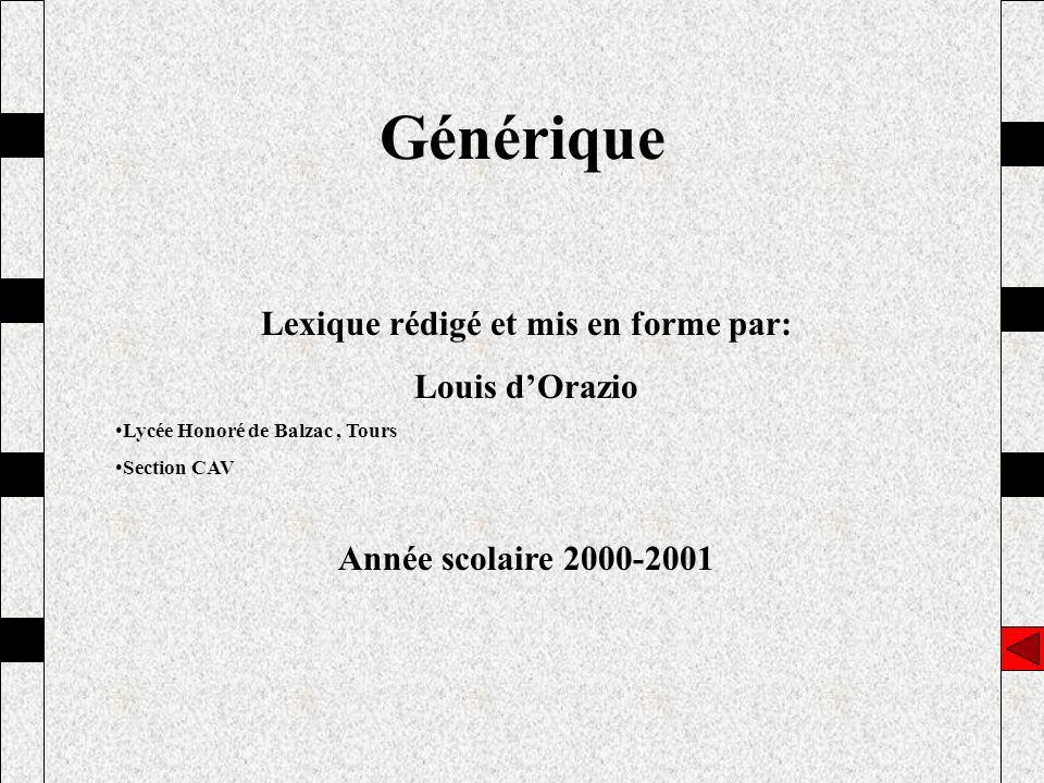 Générique Lexique rédigé et mis en forme par: Louis dOrazio Lycée Honoré de Balzac, Tours Section CAV Année scolaire 2000-2001