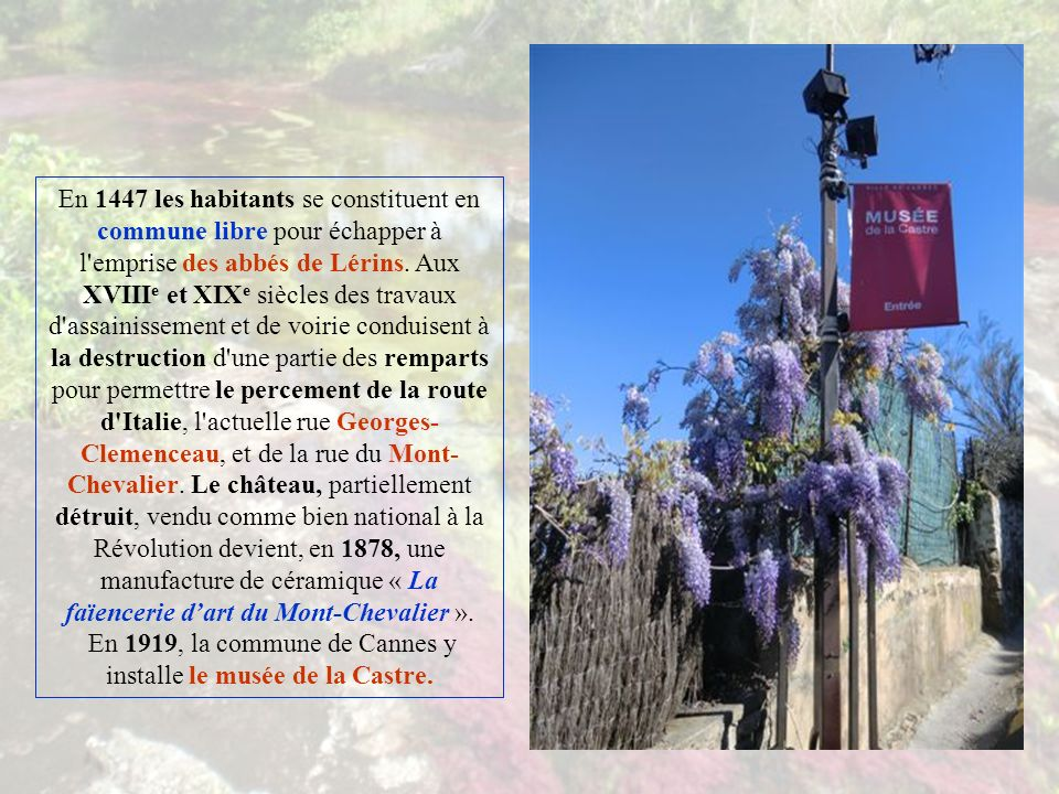 Un premier jardin planté dessences méditerranéennes, notamment de grands pins parasols, accueille le promeneur.