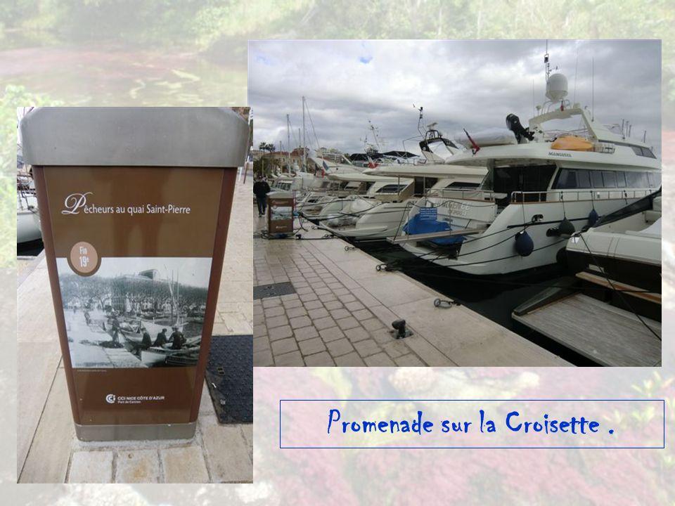 Côte d Azur – Cannes.