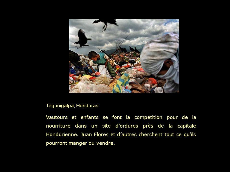Tegucigalpa, Honduras Vautours et enfants se font la compétition pour de la nourriture dans un site dordures près de la capitale Hondurienne.
