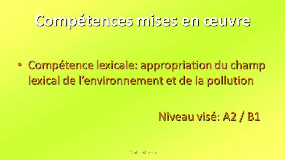 Compétences mises en œuvre Compétence lexicale: appropriation du champ lexical de lenvironnement et de la pollution Niveau visé: A2 / B1 Diphe-Marzin