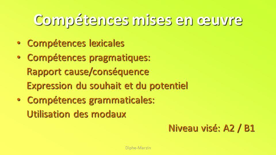 Compétences mises en œuvre Compétences lexicales Compétences pragmatiques: Rapport cause/conséquence Expression du souhait et du potentiel Compétences
