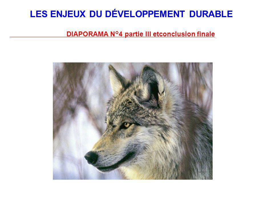 LES ENJEUX DU DÉVELOPPEMENT DURABLE DIAPORAMA N°4 partie III etconclusion finale