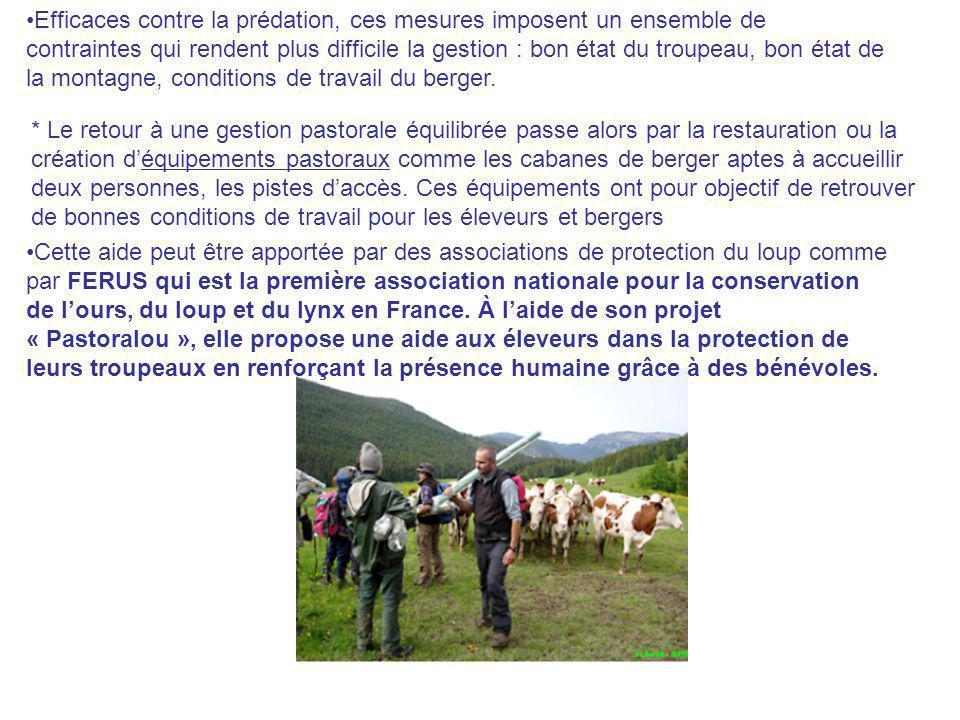 Efficaces contre la prédation, ces mesures imposent un ensemble de contraintes qui rendent plus difficile la gestion : bon état du troupeau, bon état
