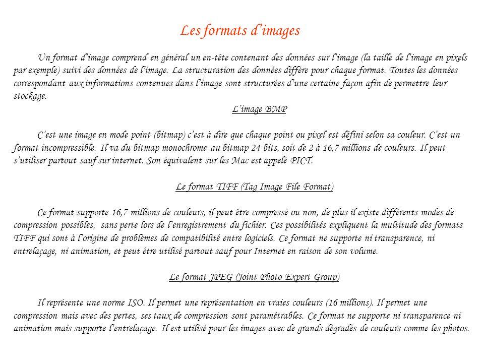 Un format dimage comprend en général un en-tête contenant des données sur limage (la taille de limage en pixels par exemple) suivi des données de limage.