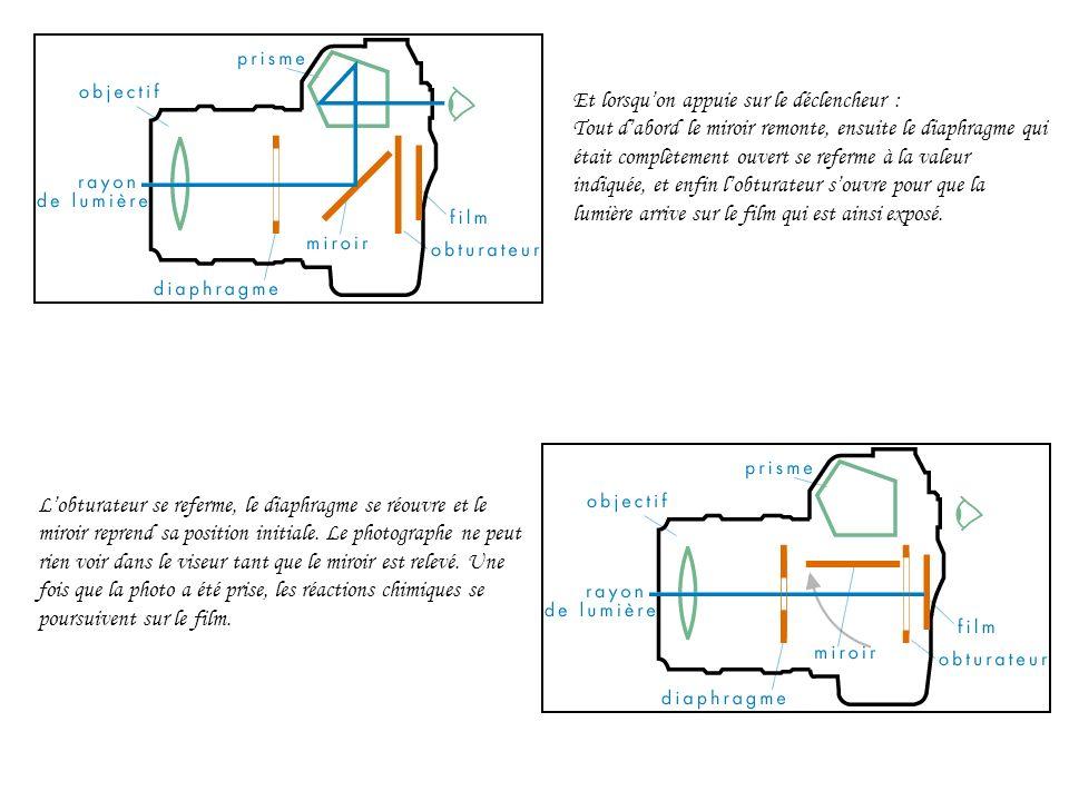 Lobturateur se referme, le diaphragme se réouvre et le miroir reprend sa position initiale.