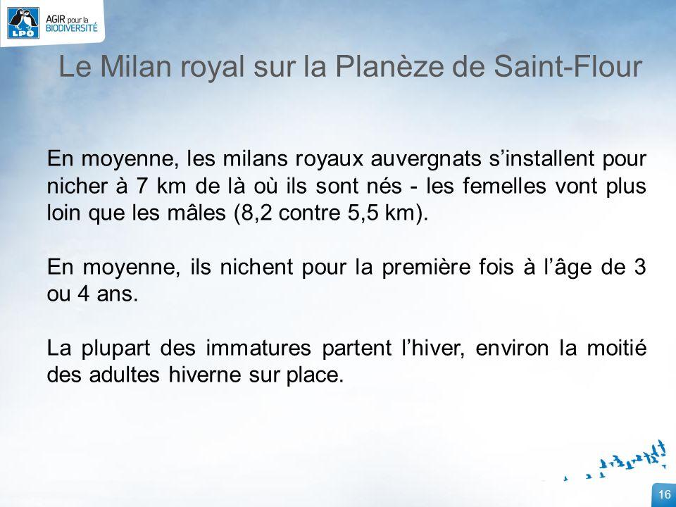 16 Le Milan royal sur la Planèze de Saint-Flour En moyenne, les milans royaux auvergnats sinstallent pour nicher à 7 km de là où ils sont nés - les fe