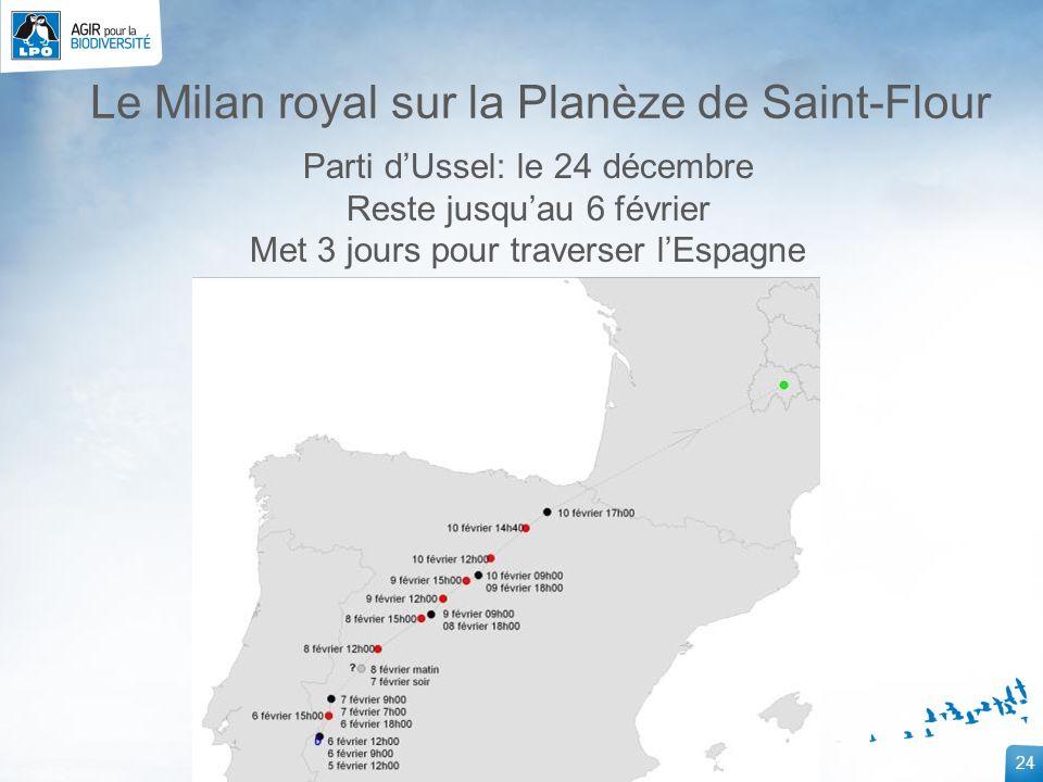 24 Le Milan royal sur la Planèze de Saint-Flour Parti dUssel: le 24 décembre Reste jusquau 6 février Met 3 jours pour traverser lEspagne