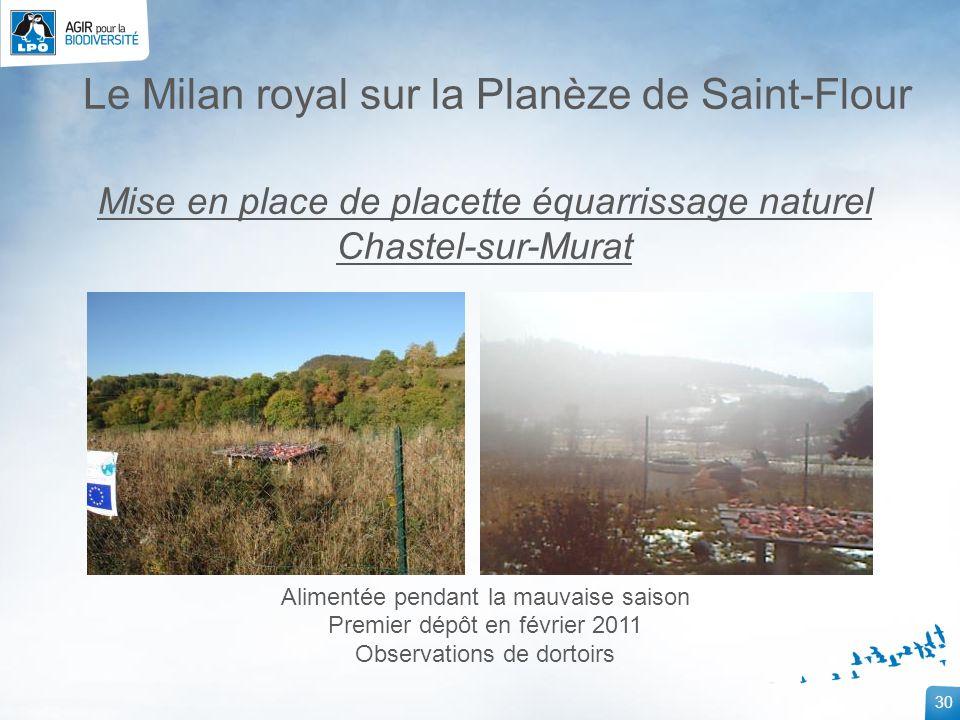 30 Le Milan royal sur la Planèze de Saint-Flour Mise en place de placette équarrissage naturel Chastel-sur-Murat Alimentée pendant la mauvaise saison