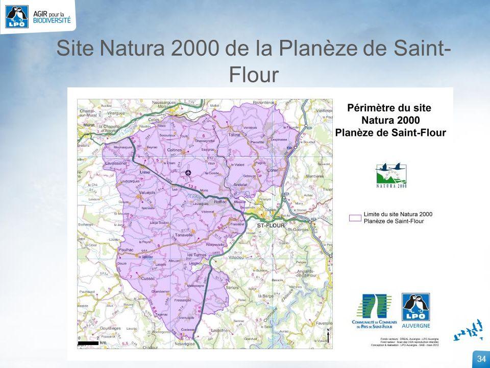 34 Site Natura 2000 de la Planèze de Saint- Flour