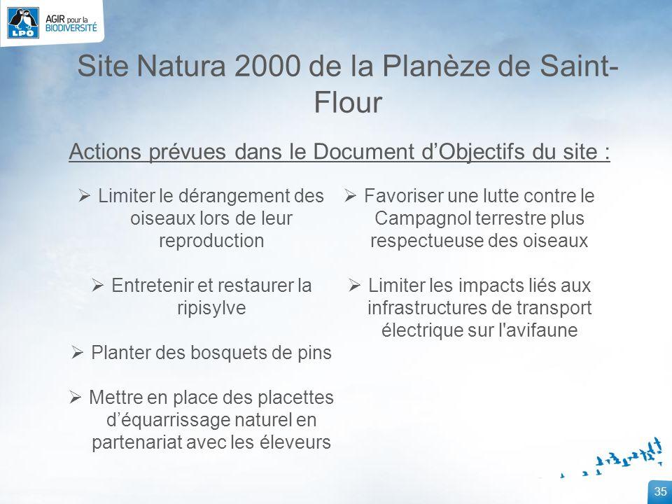 35 Site Natura 2000 de la Planèze de Saint- Flour Limiter le dérangement des oiseaux lors de leur reproduction Entretenir et restaurer la ripisylve Pl