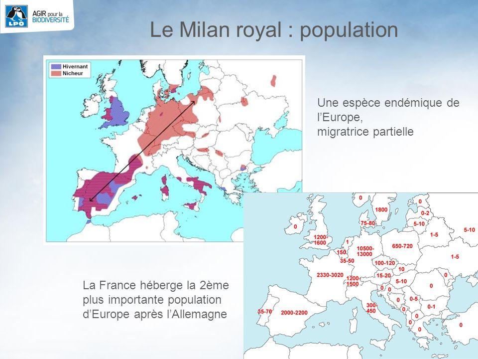 4 La France héberge la 2ème plus importante population dEurope après lAllemagne Le Milan royal : population Une espèce endémique de lEurope, migratric